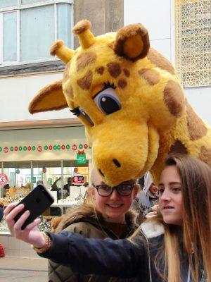 Gemma the Giraffe Selfie